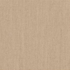 SUNBP017 Flax