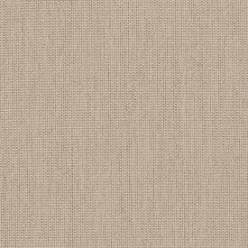 SUNBP055 Papyrus